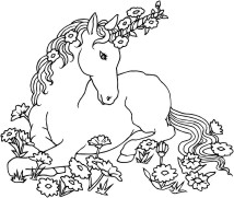 Single unicorn laying in a field of flowers
